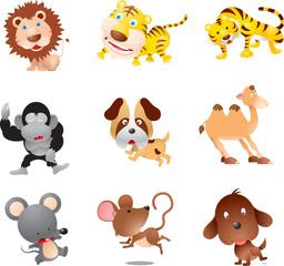 Jungle funny animals