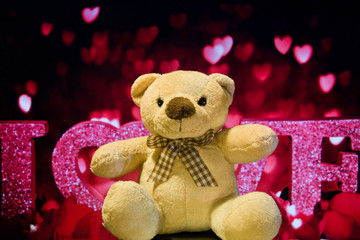 Full of love teddy bear