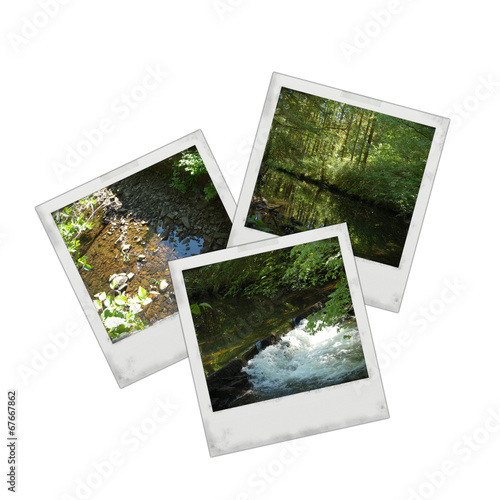 Staande foto Kameleon Photo