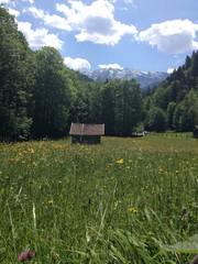 Hütte auf Wiese vor Berglandschaft