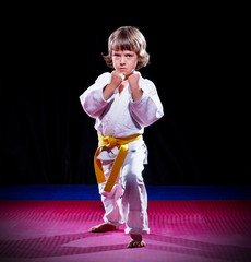 Little boy aikido fighter