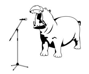 singing hippo
