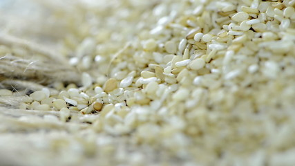 Sesame Seeds as loopable background full HD video