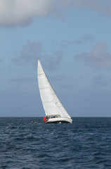 Sailing vessel in sea. Saint Lucia