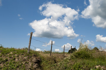 Clouds Over Fenced Yard