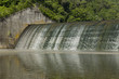 Dam Lake Versailles - 67677651