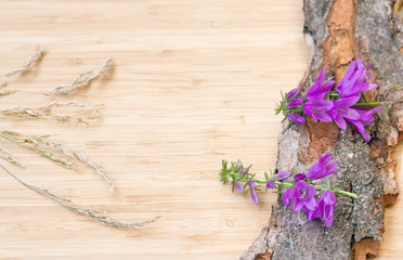 Flowers on old bark, rustic