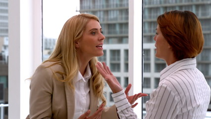 Angry businesswomen having an argument