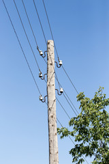 wooden pole with electricity