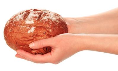 Delicious bread in hands
