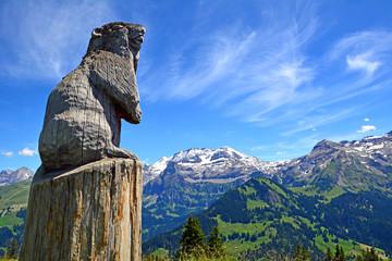 Murmeltier vor Wildstrubel, Kanton Bern