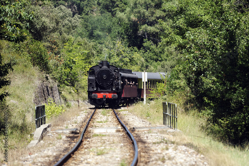 canvas print picture Little tourist steam train from Anduze