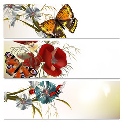 Beautiful backgrounds set with flowers and butterflies