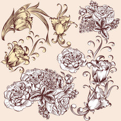 Collection of vector hand drawn flowers