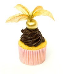 Golden Physalis and Chocolate Cupcake