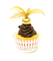 Golden Physalis and Chocolate Cupcake with Wrapper