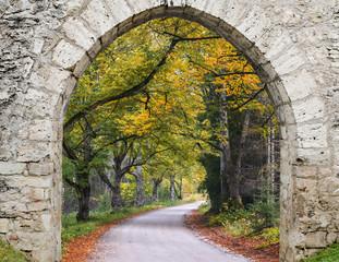 Countryside road in autumn, Vidzeme, Latvia