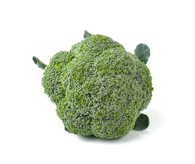 broccoli isolated on white ackground
