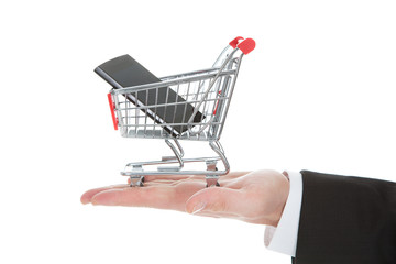 Businessman's Hand With Mobile Phone In Shopping Cart Model
