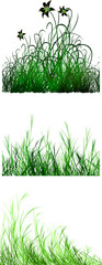 vectro set of grass texture