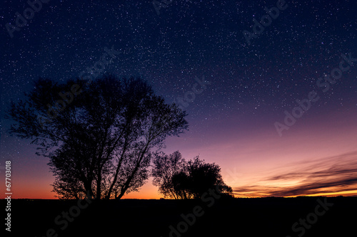 canvas print picture Sternenreicher Sonnenuntergang