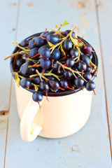 Blackcurrants in vintage steel mug
