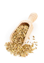 Fennel seeds on wooden scoop