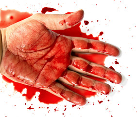 Hand in blood on a white background