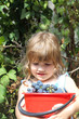 Little girl holding big red bucket of grapes in vineyard