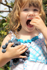 Girl with curly hair holding a bunch of grapes and grape tastes