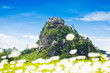 Hochosterwitz castle behind chamomile flowers