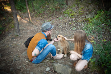 people stroking dog in the forest
