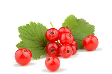 Fresh red currant berries with stem and leaf