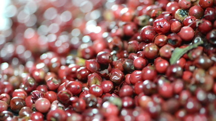 Pink Peppercorns (loopable)