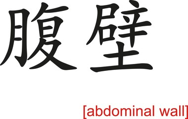 Chinese Sign for abdominal wall