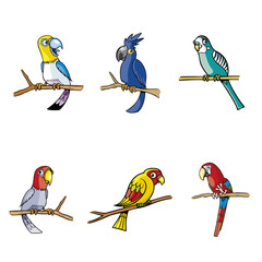 Collection of Parrot and Tree Colorful Vector