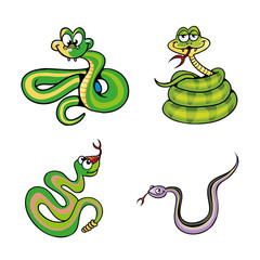 Collection of Cute Snake Cartoon Vector