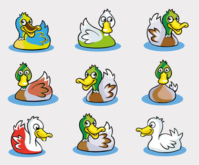 Collection of Cute Duck Cartoon Vector