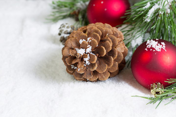 Closeup of a Pine Cone on Snow with Pine Tree Branch and Ornamen