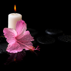 Beautiful spa still life of delicate pink hibiscus, candles, zen