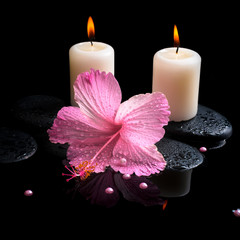 Beautiful spa still life of pink hibiscus, drops,  candles and p