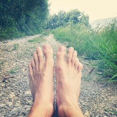 Foot in nature