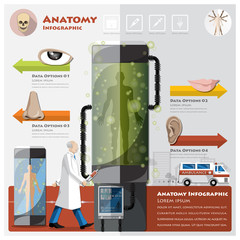 Health And Medical Otolaryngology Anatomy Infographic