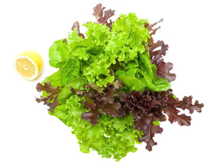 fresh lettuce and lemon on a white background closeup