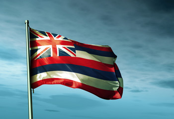 Hawaii (USA) flag waving on the wind