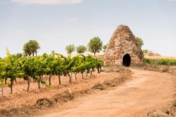 Refugio Tradicional De Pastores Y Agricultores. España