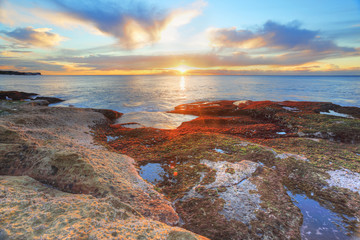 Red and green algae covered rocks at sunrise  Coogee, Sydney Aus