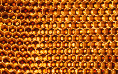Beehive deserted pattern background
