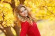 Portrait of beautiful young woman in autumn park.
