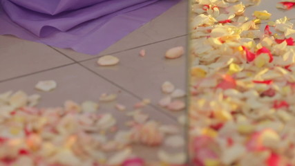 Rose petals on floor mirror